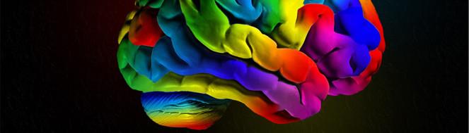 brain_def1